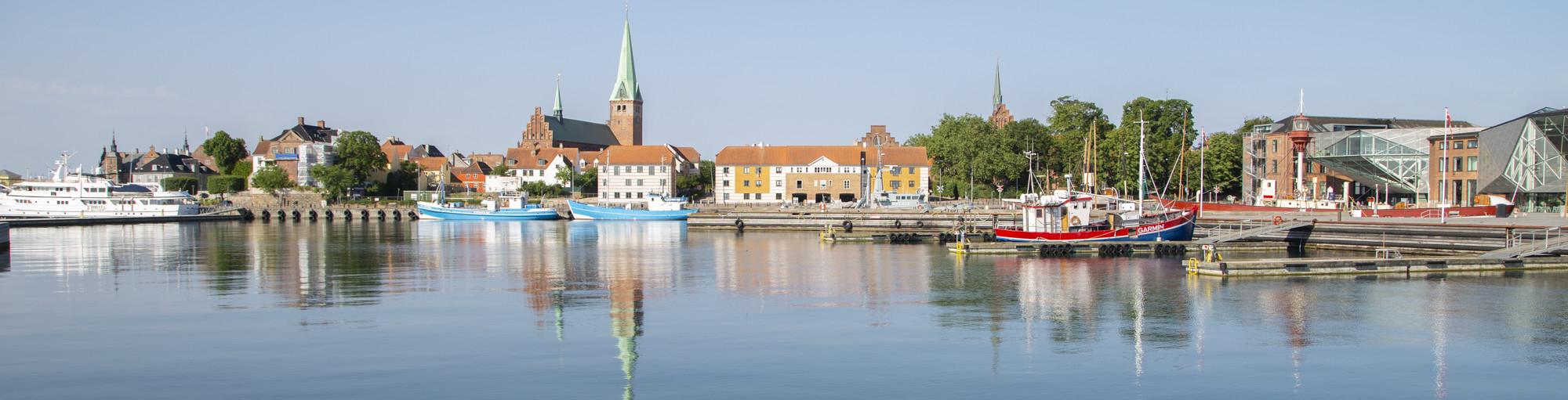 Skyline af Helsingør Domkirke og Stift